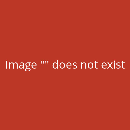 Sternfilter Gitter-Filter Star 6 x Filter 77 mm